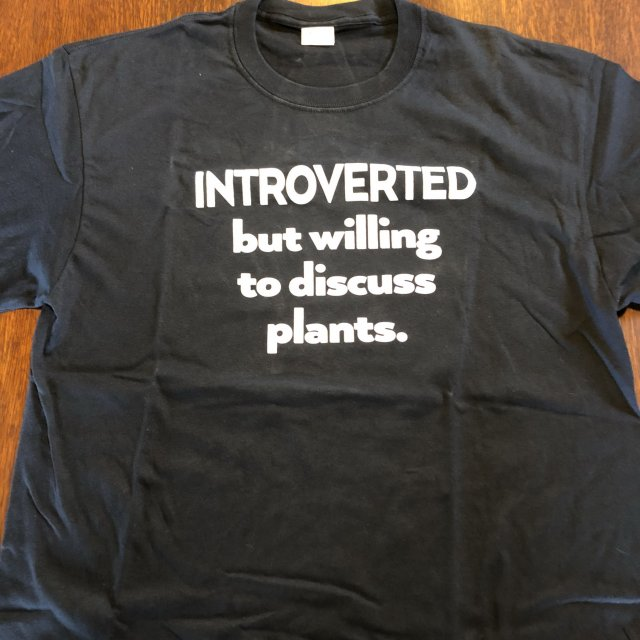T Shirt Introverted